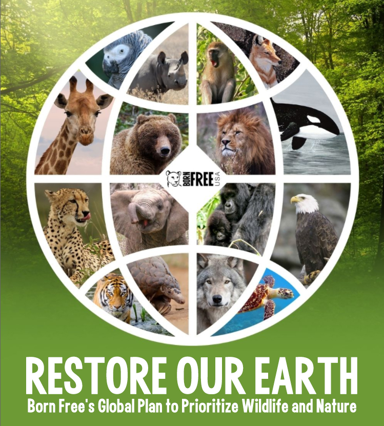 Restore Our Earth Earth Day Online Event
