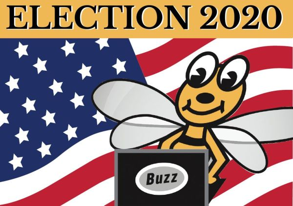 "Image of bumble bee siting at a laptop with the word ""Buzz"" on it. The banner reads Election 2020."
