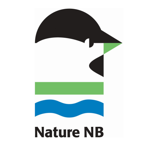 Nature NB