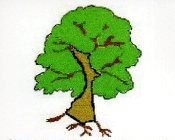 Bruce County Genealogical Society